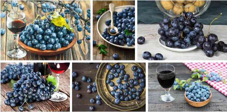 vino elaborado con frutas